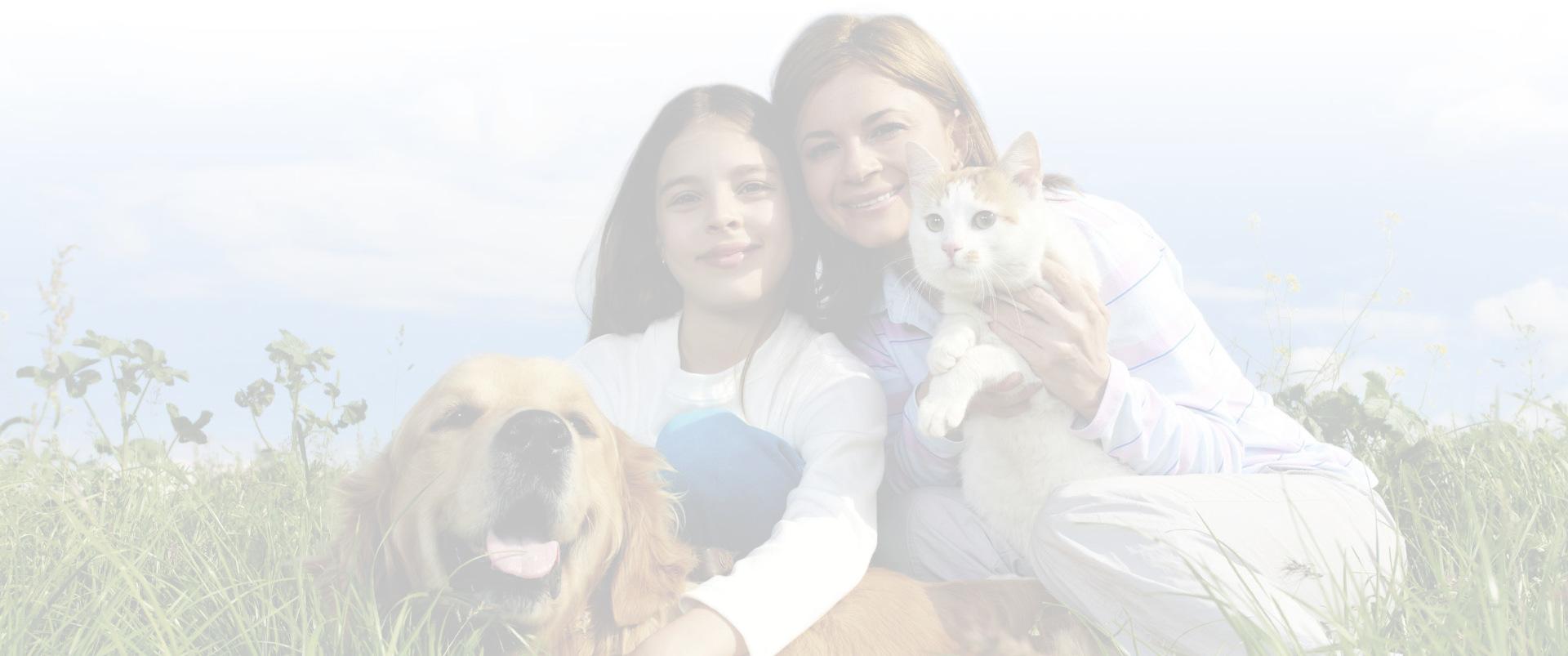 veterinaria-torino-chieri